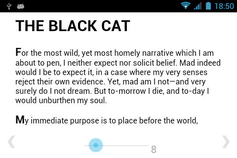 BiBook of The black cat