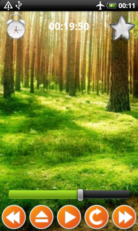 Forest Sounds Nature To Sleep - screenshot