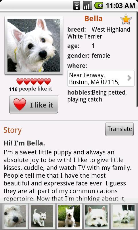 Pets Next Door -Dogs,Cats&More- screenshot