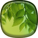 Leaf Live Wallpaper Galaxy S4 icon
