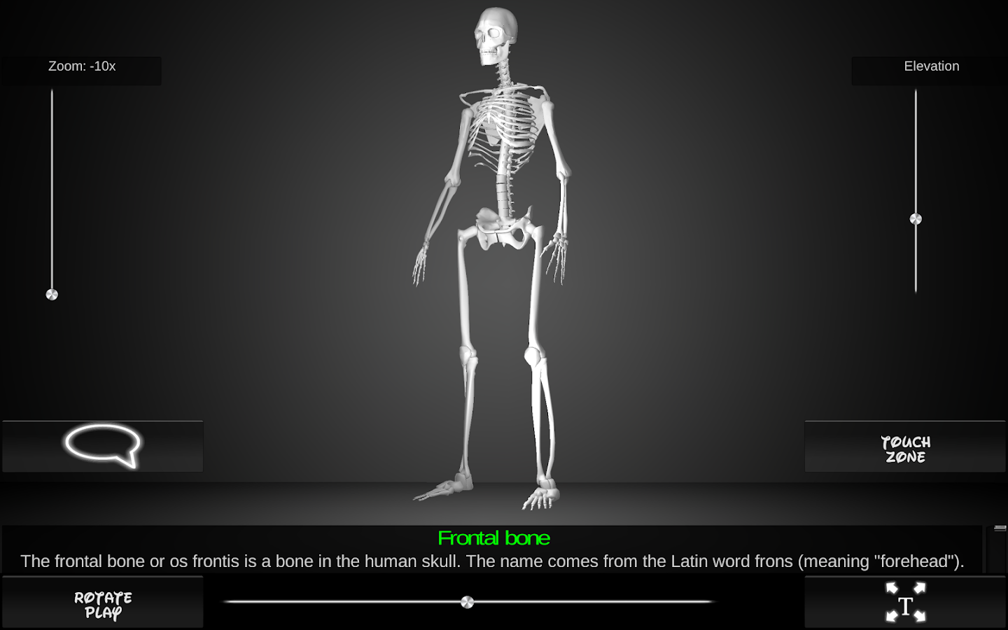 Bones Human 3D (anatomy) - screenshot