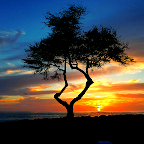 by Ad Blessings - Landscapes Sunsets & Sunrises