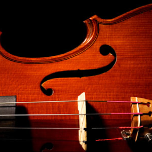 Easy Violin - Violin Tuner 音樂 App LOGO-APP試玩