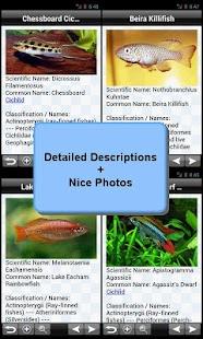 Tropical Fish Encyclopedia