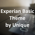 eXpeRianZ Basic Theme icon