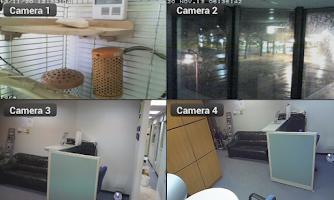 Screenshot of Viewer for GeoVision ip camera