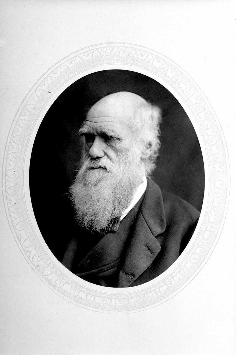the life of charles darwin Chiefly remembered as darwin's captain on hms beagle, robert fitzroy's life was an eventful one robert fitzroy, the superb sailor and founding father of the met office, is often remembered merely as charles darwin's taciturn captain on hms beagle.