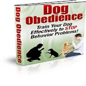 Dog Obedience!