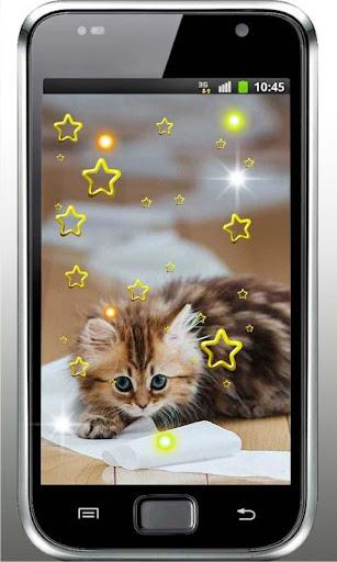 Pet Kitty Free live wallpaper