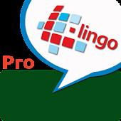 L-Lingo Learn Arabic Pro