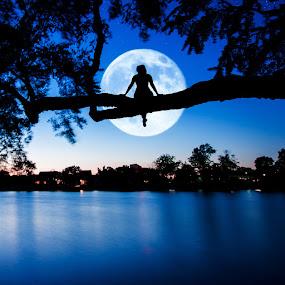Moon Gazing by Andrew Hale - City,  Street & Park  Night ( moon, moongazing, delaware, lake, night, nightphotography )