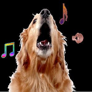 Dog Bark Ringtone Android