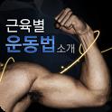 근육별 운동법 icon