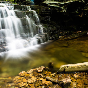 Miners Run by Isaac Golding - Landscapes Waterscapes ( pennsylvania, ralston, miner's run )
