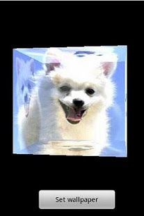 3D cute dog A12 - screenshot thumbnail