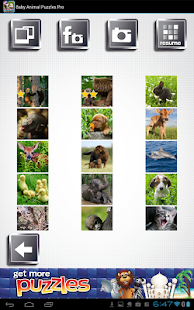 Baby Animal Puzzles Free Game - screenshot thumbnail
