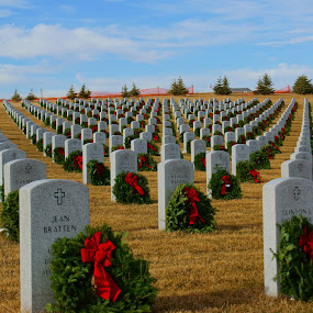 Close up View by Dustin White - City,  Street & Park  Cemeteries ( veterans, cemetery, wreaths, historic, military )