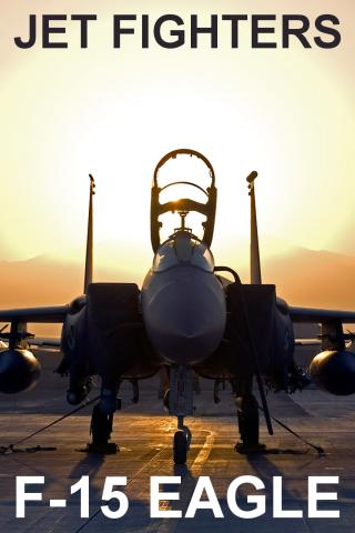 Jet Fighters: F-15 Eagle PRO - screenshot