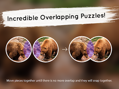 Venn Bears: Circle Jigsaw- screenshot thumbnail