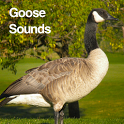 Goose Sounds icon