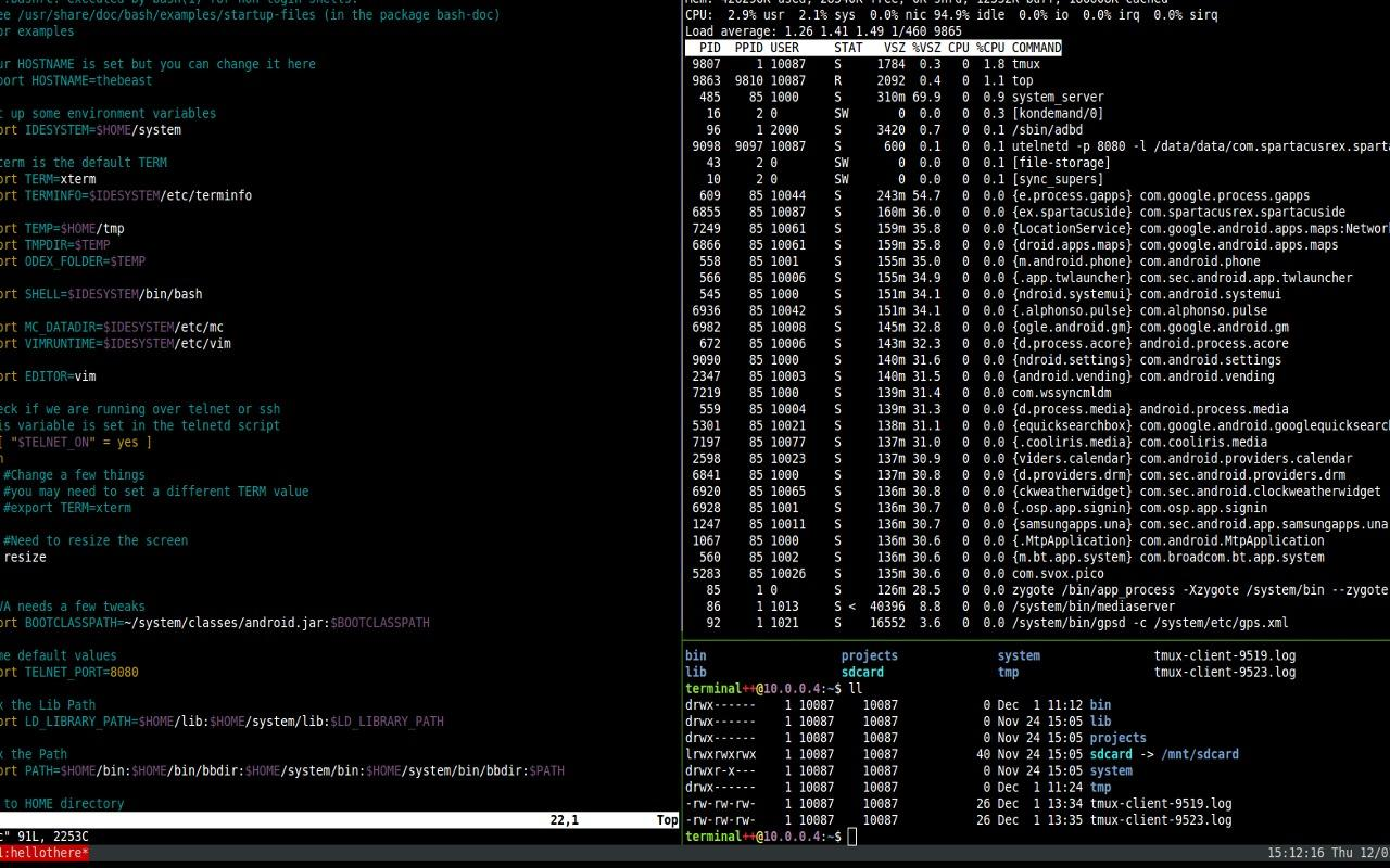 Terminal IDE - screenshot
