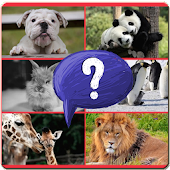 The Animal Guessing Quiz
