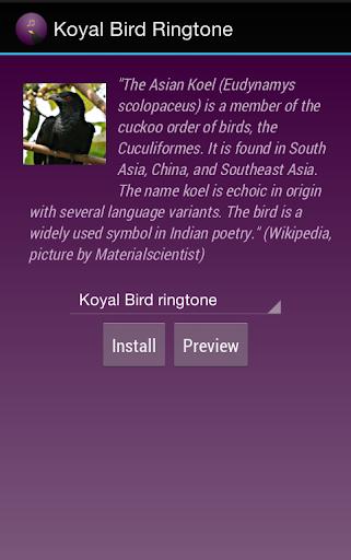 Koyal Bird Ringtone