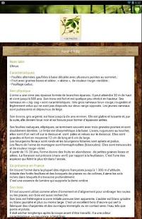 Bois Forêt - screenshot thumbnail