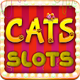 Cats Slots .. file APK for Gaming PC/PS3/PS4 Smart TV