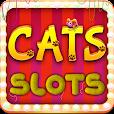Cats Slots Casino Vegas Free