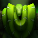 Snake The Best Free Game icon
