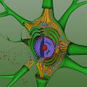 EON 3D Neuron Structure icon