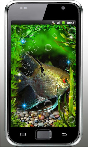 Aquarium Exotic Fish HD LWP