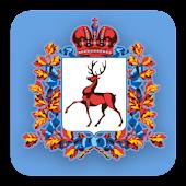 Госуслуги Нижний Новгород