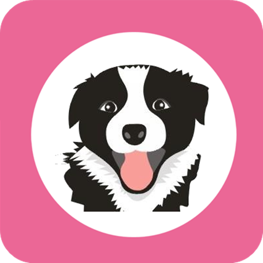 边牧浏览器 工具 App LOGO-硬是要APP