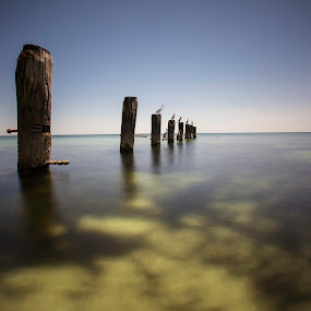 by Tracey Macnish - Landscapes Waterscapes ( socity6 )