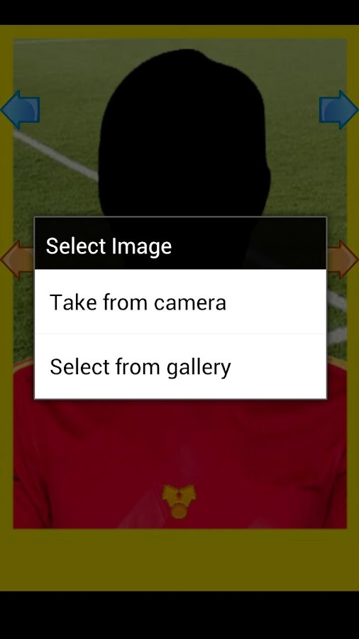 Uefa Euro 2012 Player - screenshot