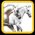 FoderStat beräkning Häst icon