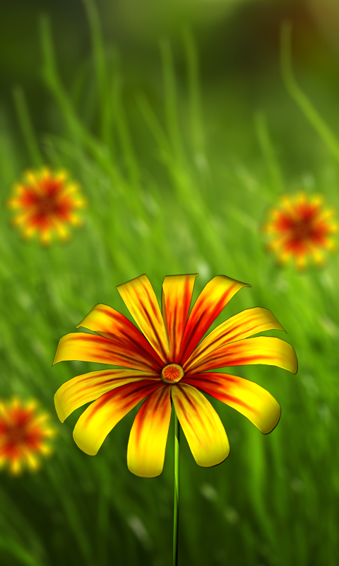 360 Flower Live Wallpaper 3d Android Apps On Google Play