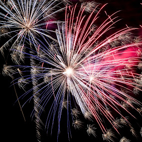 All American Fireworks by Nicolas Los Baños - Public Holidays July 4th ( america, holidays, fireworks, pyrotechnics, independence day, fourthofjuly )