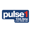 Pulse 1 icon