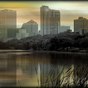 Downtown by Dawn Marie - Buildings & Architecture Office Buildings & Hotels ( milwaukee, clouds, water, wisconsin, reflection, sky, lagoon, trees, architecture, pond, downtown )