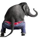 Dancing Elephant icon