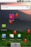 Screenshot of Cute Ladybugs Live Wallpaper