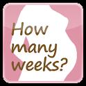 Simple Pregnancy Widget icon