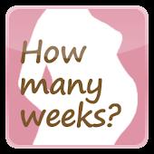 シンプル妊娠週数ウィジェット