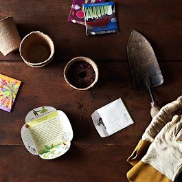 Heirloom Seed Art Packets, Herbs & Vegetables (Set of 5)
