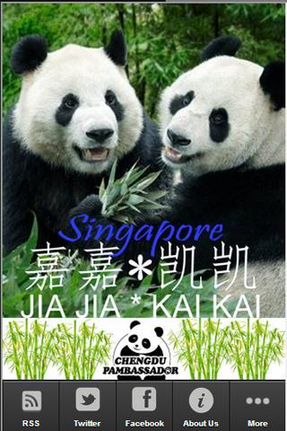 Singapore Chengdu Pambassador