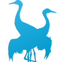 Free Quiz: Nordic Birds icon