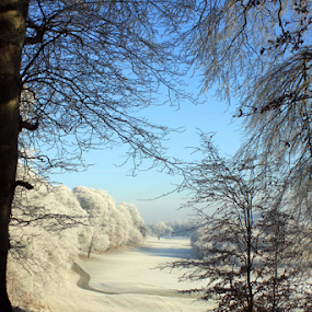 Winter in County Clare by Oona Tully - Landscapes Weather ( winter, ice, frost, landscape, frozen )